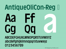 AntiqueOliCon-Reg