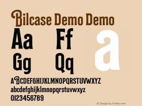 Bilcase Demo