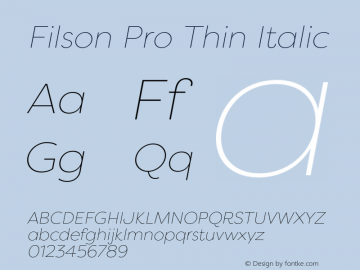 Filson Pro