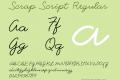 Scrap Script