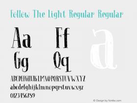 Follow The Light Regular