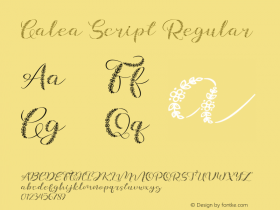 Galea Script