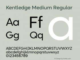 Kentledge Medium