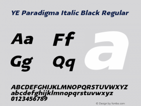 YE Paradigma Italic Black