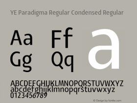 YE Paradigma Regular Condensed