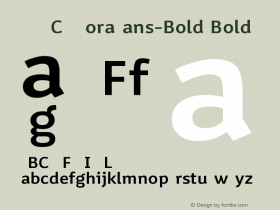 VNYGCQ+MoraSans-Bold