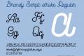 Brandy Script stroke