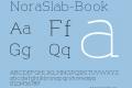 NoraSlab-Book
