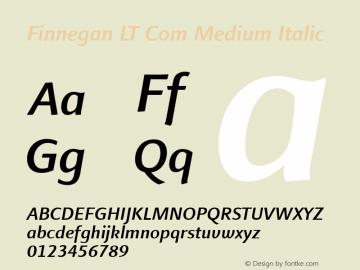 Finnegan LT Com