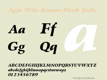Agfa Wile Roman Black