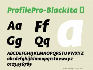 ProfilePro-BlackIta
