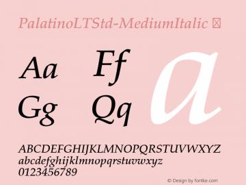 PalatinoLTStd-MediumItalic