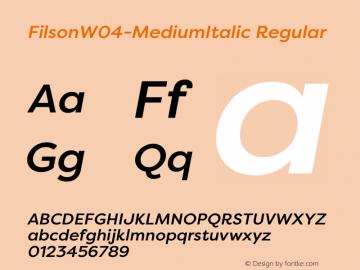 FilsonW04-MediumItalic