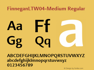 FinneganLTW04-Medium