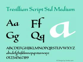 Tresillian Script Std