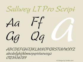 Sallwey LT Pro