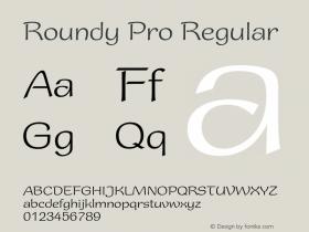 Roundy Pro