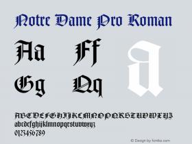 Notre Dame Pro