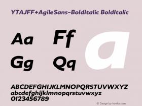 YTAJFF+AgileSans-BoldItalic