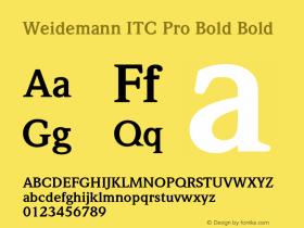 Weidemann ITC Pro Bold