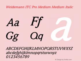 Weidemann ITC Pro Medium