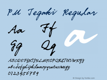 PM Tegaki