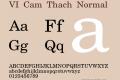 VI Cam Thach