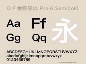 DF金剛黒体 Pro-6