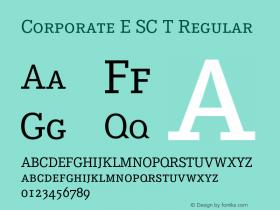 Corporate E SC T