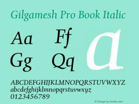 Gilgamesh Pro