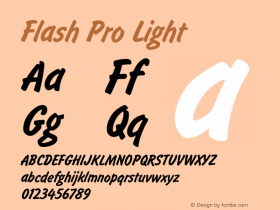 Flash Pro