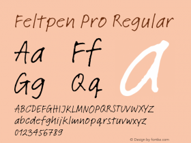 Feltpen Pro