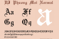 VI Phuong Mai