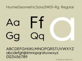 HurmeGeometricSans3W01-Rg