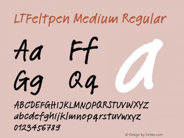 LTFeltpen Medium