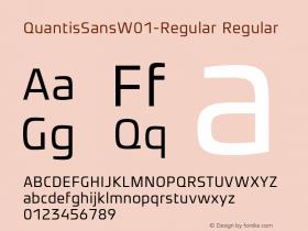 QuantisSansW01-Regular