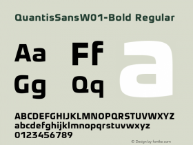 QuantisSansW01-Bold