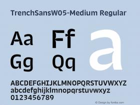 TrenchSansW05-Medium