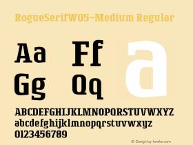 RogueSerifW05-Medium
