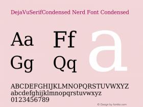 DejaVuSerifCondensed Nerd Font