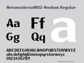 MetamodernaW02-Medium