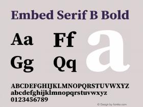 Embed Serif B