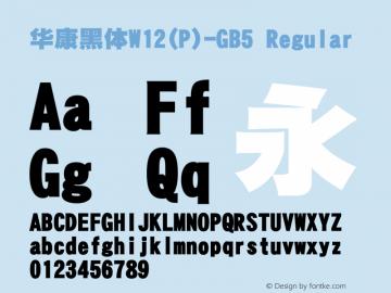 華康黑體W12(P)-GB5