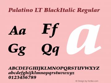 Palatino LT BlackItalic