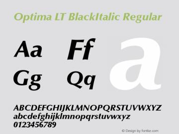 Optima LT BlackItalic