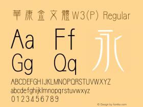 華康金文體W3(P)