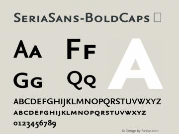 SeriaSans-BoldCaps