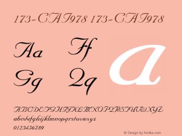173-CAI978