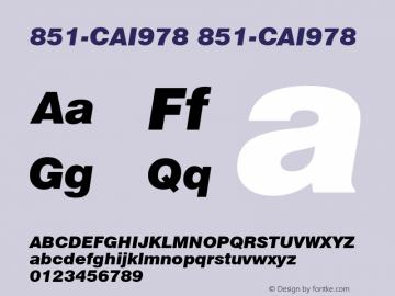 851-CAI978