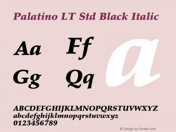 Palatino LT Std Black